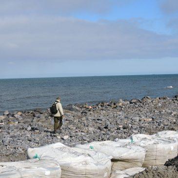 Общественники Воркуты провели субботник на берегу Карского моря