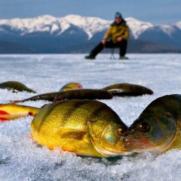 Начался приём заявок на участие в городском соревновании по подлёдному лову «Удача рыбака 2015»