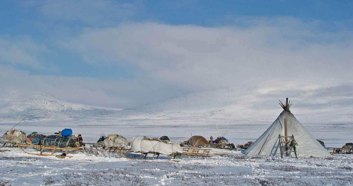 Чумы оленеводов в Арктике