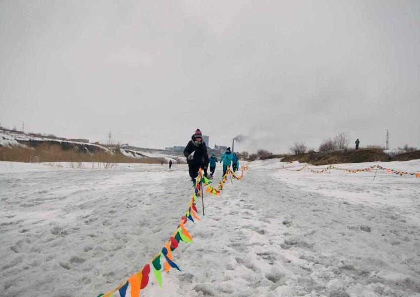 Арктик Фокс 2016
