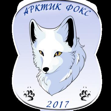 Спортивно-массовое мероприятие туристических команд  «Арктик Фокс — 2017»