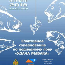 Соревнования по подледном лову Удача рыбака