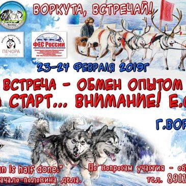 Встреча-мероприятие для обмена опытом по развитию ездового спорта в Воркуте